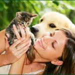 Pet Groomers: Key to Happy Animals and Owners